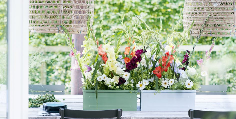 Blumenkasten bepflanzen und andere Ideen für Balkon und Terrasse
