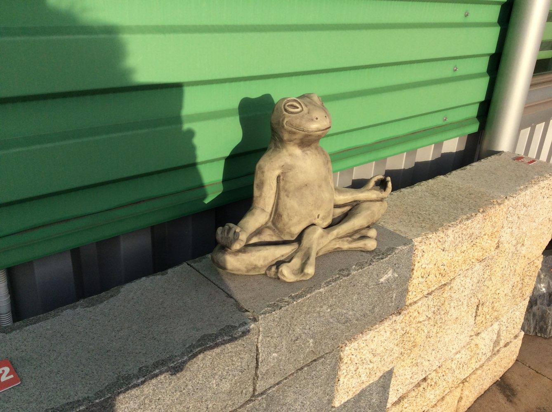 Steinguss -Yoga-Frosch-